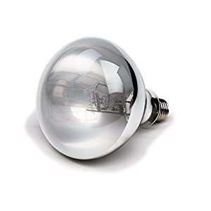 Evergreen Pet Supplies UVA UVB Light Bulb