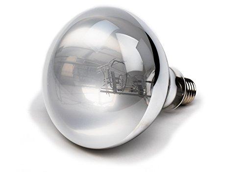 Evergreen Pet Supplies 100 Watt UVA UVB Mercury Vapor Bulb/Light/Lamp
