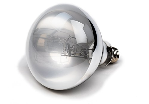 100 Watt UVA/UVB Mercury Vapor Bulb For Reptiles By Evergreen Pet Supplies