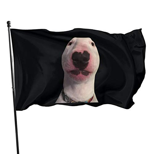 Walter (Dog Meme) Outdoor Garden Flag Indoor Flag Home Decor Standing Farm Flag Banner 3x5ft, One Size