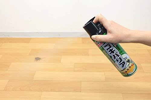 【防除用医薬部外品】ゴキバリアゴキブリ用殺虫スプレー[殺虫・侵入防止効果250mL]