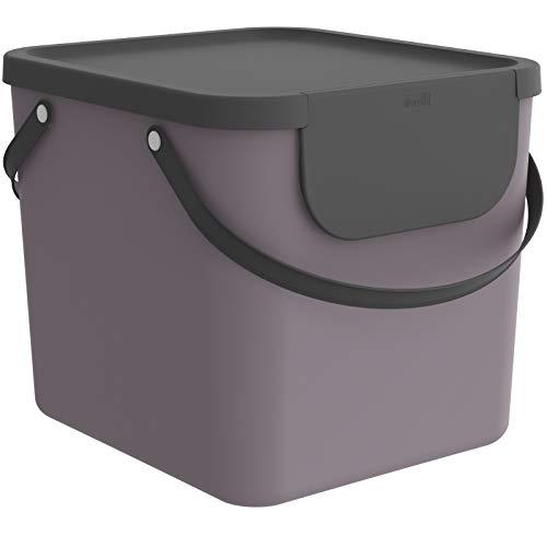 Rotho Albula Scatola di stoccaggio 40l con coperchio, Plastica (PP riciclato), malva/antracite, 40l (39.8 x 35.8 x 33.9 cm)