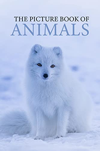Couverture du livre The Picture Book Of Animals: A Beautiful Gift Book For Retired Older Coworker Or Boss Who Are Dementia And Alzheimer Patient. (English Edition)