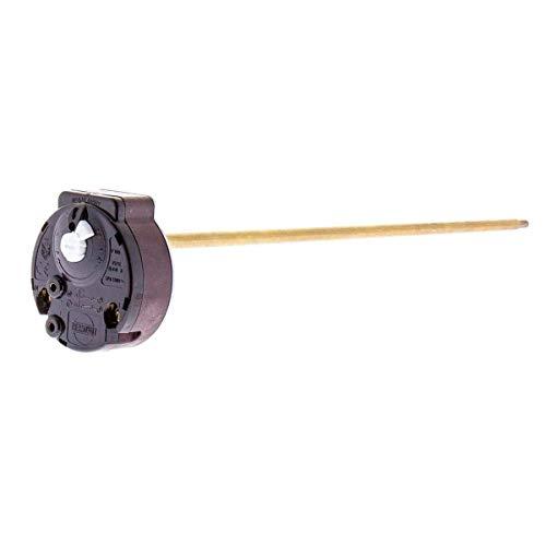 Recamania Termostato Varilla Termo Standard Unipolar 6x270mm