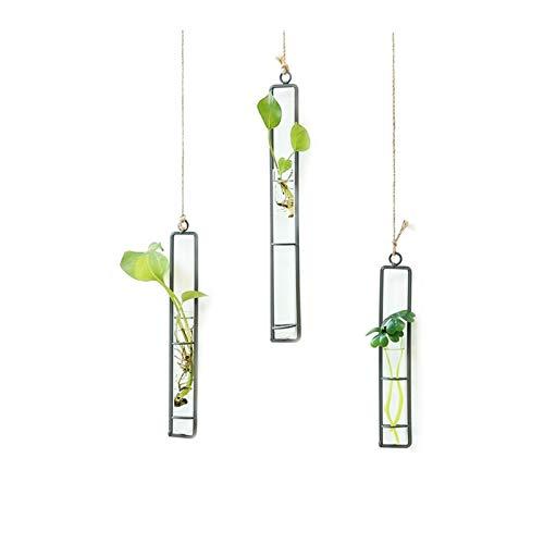 Jian E - (Daily necessities) Florero del Colgante de Pared, Accesorios Decorativos de los bonsais de la Planta de Cristal del Encanto del Arte del Hierro de la jardinería casera, tamaño: M