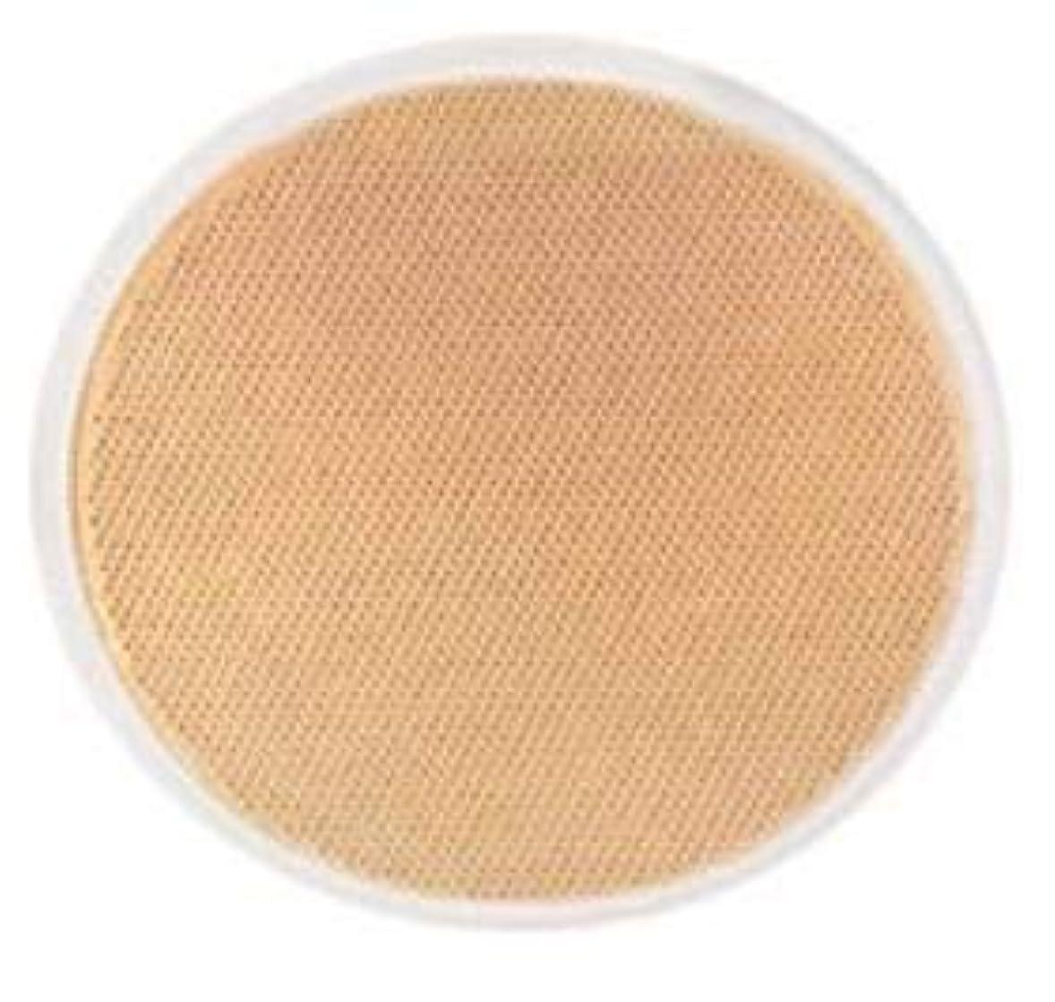 うま織機アレルギーコスメデコルテ ラクチュール ルースファンデーション N<303>(レフィルのみ)