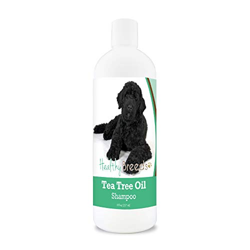 Healthy Breeds Portuguese Water Dog Tea Oil Shampoo Anti Itching Anti fungal Anti Bacterial Relieve Skin Irritations 8oz