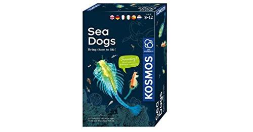 Kosmos- Sea Dogs-Urzeitkrebseselbst züchten Set di esperimenti per Bambini con Istruzioni multilingue (DE, EN, FR, IT, ES, NL), Multicolore, 616779
