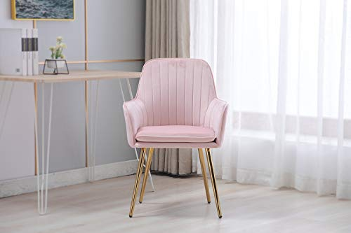 Artechworks Accent Living Dining Room Velvet Arm Chair Club Leisure Guest Lounge Bedroom Upholstered Chair with Gold Metal Legs, Pink