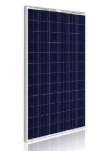 Q CELLS 265W Poly BLK/WHT Solar Panel - Pack...