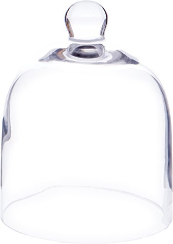 "Plymor 5"" x 6"" Bell Jar Glass Display Dome Cloche (Interior Size 4.75"" x 5"")"