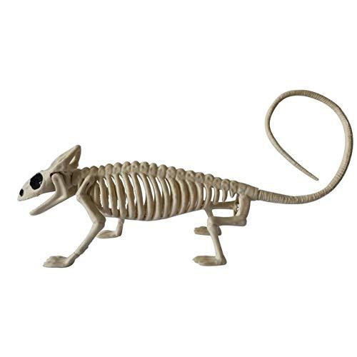MYYXGS - Decorazione per Halloween con ossa, motivo scheletro e ragno raccapricciante