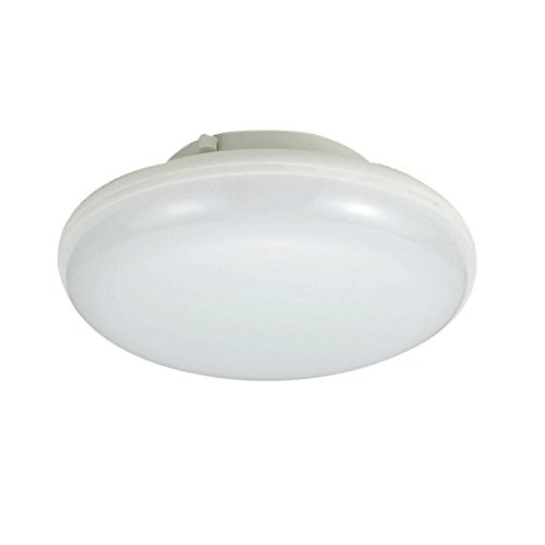 (まとめ買い) LED小型シーリングライトD色 LCL-S1001(D) 【×3】