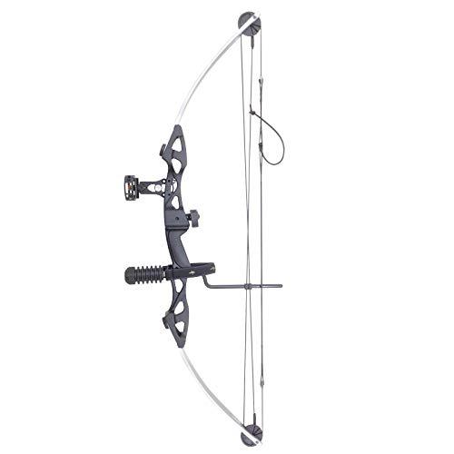 Siege SAS 55 lb 29'' Compound Bow w/ 5-Spot Paper Target (Silver/Black w/Package)