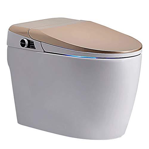 VIY Elektrisch Bidet, Integrierte Intelligente Toilette, Elektronischer Bidet, Selbstreinigende Düse aus Volledelstahl, Nachtlicht, Desodorierung, beheizter Sitz, Kabellose Fernbedienung (1400W)