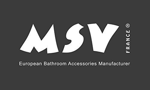 MSV 81/100108