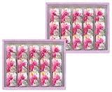 筑紫もち 30個いり 如水庵 福岡博多土産