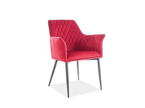 LUENRA - Juego de 2 sillas de comedor, 85 × 45 × 43 cm, conjunto de bandeja acolchada de tela de terciopelo y patas de metal negro, color vino rojo