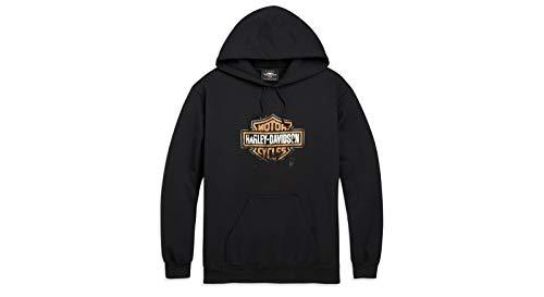 HARLEY-DAVIDSON Herren Hoodie Kapuzen-Pullover Patina Bar & Shield Biker Pulli Motorrad Fan-Artikel Sweatshirt Merchandise Rocker Hoody Männer (L)
