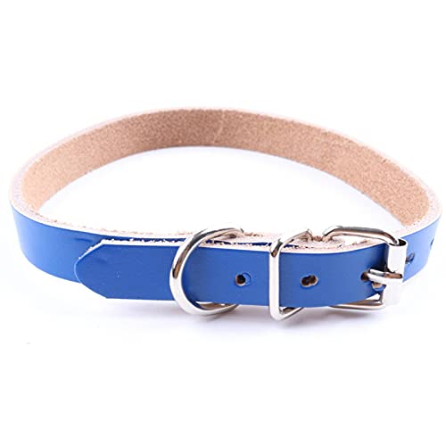 N\C Pet Supplies Collar de perro de cuero puro collar de perro de cuero puro cadena de perro