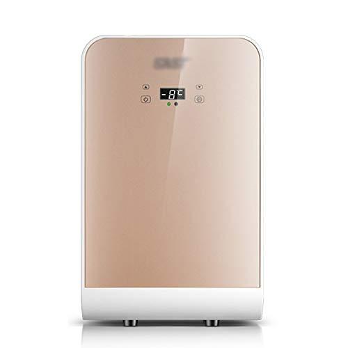 LLZH Refrigerador Portátil de 22 litros / 27 latas, Nevera Personal de Oficina Compacto, CA/CC, para Cuidado de Piel, Alimentos, Medicamentos, Cosméticos, Dormitorio y Coche,Oro