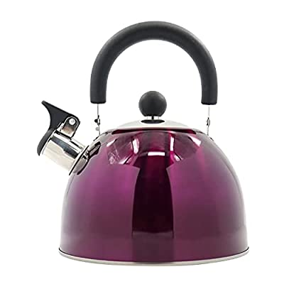 Tea Kettle Stovetop Teapot Stainless Steel Whistling Teakettle with 2.7 Liter / 2.4 Quart Purple