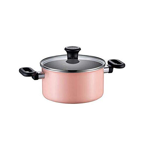 CJTMY Pentola for zuppa in Acciaio Inossidabile con Coperchio, Doppio Manico Resistente al Calore, Non tossico e salutare, Facile da Pulire e Lavabile in lavastoviglie (Color : A)