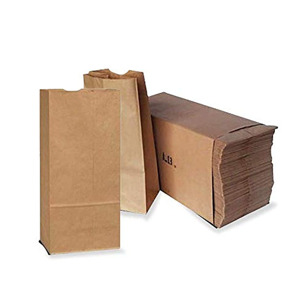 Paper Lunch Bags, Paper Grocery Bags, Durable Kraft Paper Bags, Perfect Durable Paper Lunch Bags Size Pack of 500 Bags (Brown, 5 LB)
