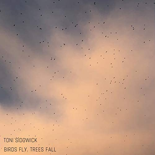 Toni Sidgwick