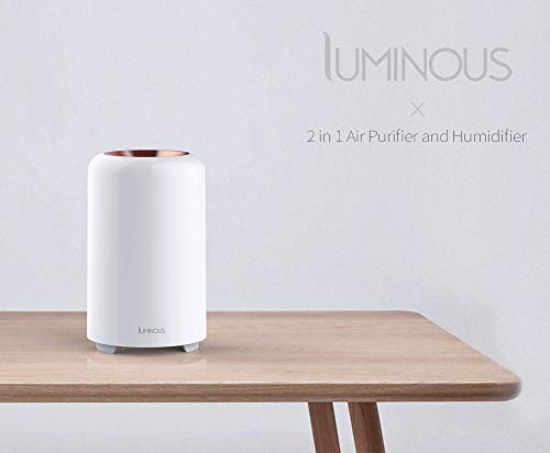 Luminous 2 in 1 Air Purifier and Humidifier, air purifiers for allergies and pets, evaporative humdifier for small room and office, air purifier and humidifire in one, remove dust, pollen, mold spores