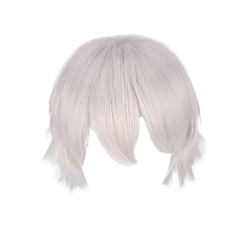 Bokeley Multi Color Short Straight Hair Wig Women Girl's Charming Synthetic Wig Anime Party Cosplay Full Sell Wigs+Cap 30cm (Silver)