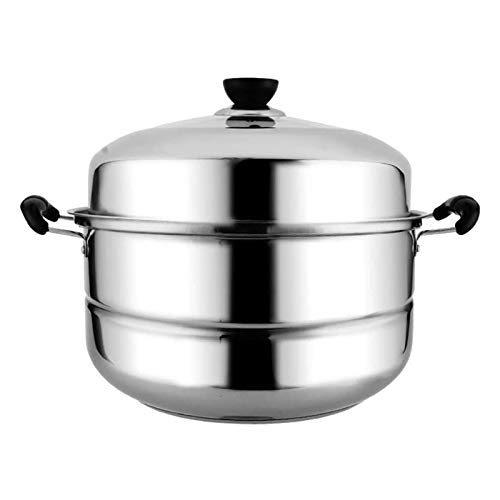 SFLRW 2 Tier 304 Stainless Steel Steamer Pot with Steamer Insert and Vented Glass Lid