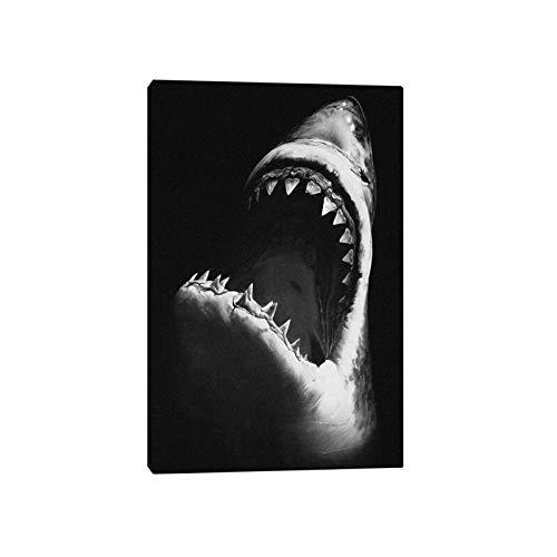 EUpMB Cuadro en Lienzo - de una Sola Pieza - Impresión en Lienzo Gran Tiburón Blanco 45x60cm impresión en Material Tejido no Tejido Cuadro de Pared impresión artística