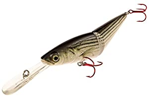 """Real Fish 5.5"""" Jack The Ripper Suspending Jerkbait Bass Fishing Lure Bait Life-Like Diving Deep Trout Shad (Striped Bass)"""