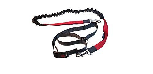 #discoversports Laufleine für Hunde mit verstellbarem Hüftgurt - Joggingleine, Freihandleine, Hundeleine, Laufgürtel, Jogging-Hundeleine (Grau-Rot)