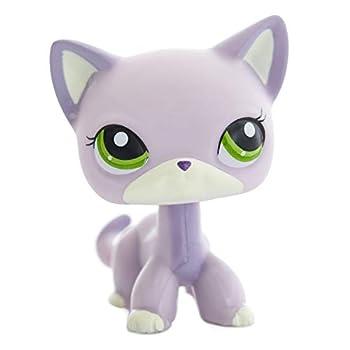 Best lps purple cats Reviews