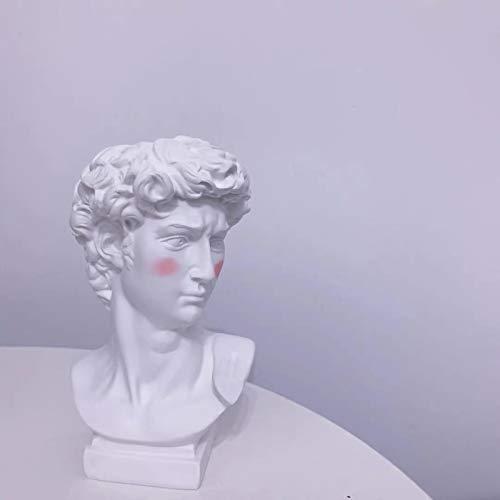HOMEJYMADE Estatuilla de resina con cabeza de David, diseño nórdico creativo de cabeza y busto, estatuilla para maceta de flores, jarrón para decoración del hogar, jardín, regalo, B