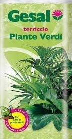 Gesal Terreau spécifique pour plantes vertes en sac de 20 litres
