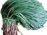 agretti, oka hijiki seeds - terra alghe, salicornia, europeo, asiatico speciali (5 grammi)