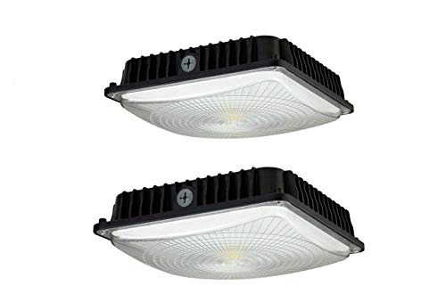 CYLED 100W LED Canopy Light Indu...