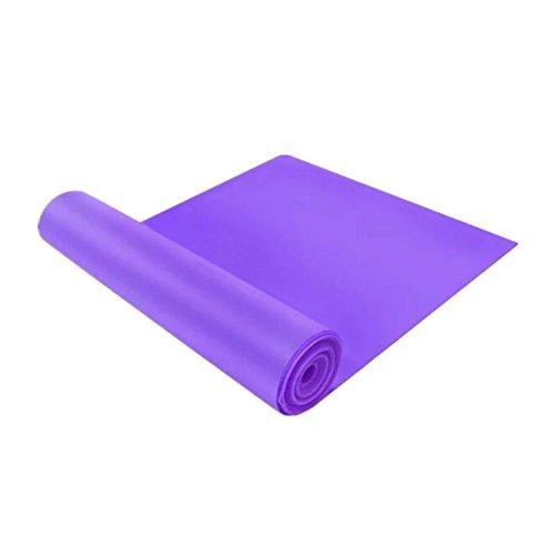 Deylaying 2pcs Bande Elastique Fitness, Solocil Bande d'exercice pour Crossfit Pilates Yoga Pilayes, Bande de résistance de Formation