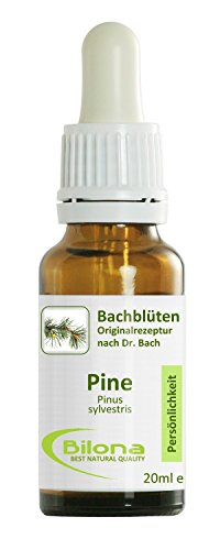 Joy Bachblüten, Essenz Nr. 24: Pine; 20ml Stockbottle