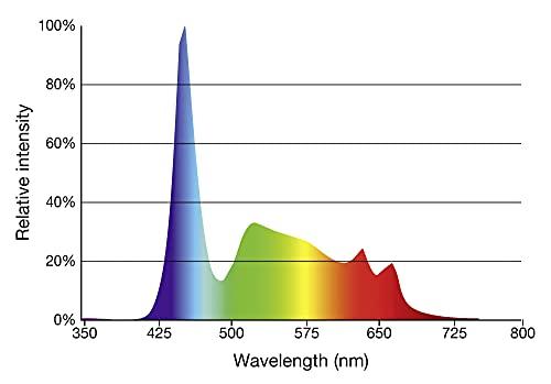 sera 31255 LED daylight sunrise 520 – Farbechtes und natürliches Tageslicht (6.000 – 8.000 Kelvin) - 4