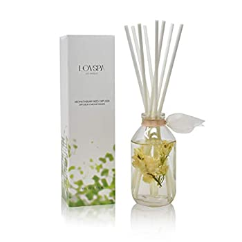 LOVSPA Coconut Cabana Reed Diffuser Scented Sticks Gift Set - Tropical Blend of Madagascar Vanilla Toasted Coconut & Creamy Sandalwood Essential Oils - Made in The USA