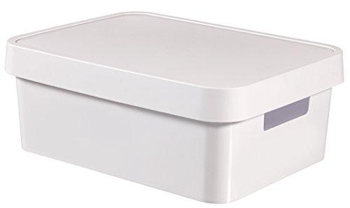 Curver 04752-n23-00 Infinity-White-Aufbewahrungsbox aus Kunststoff mit Deckel, 27 x 36,3 x 13,8 cm, 11 Liter