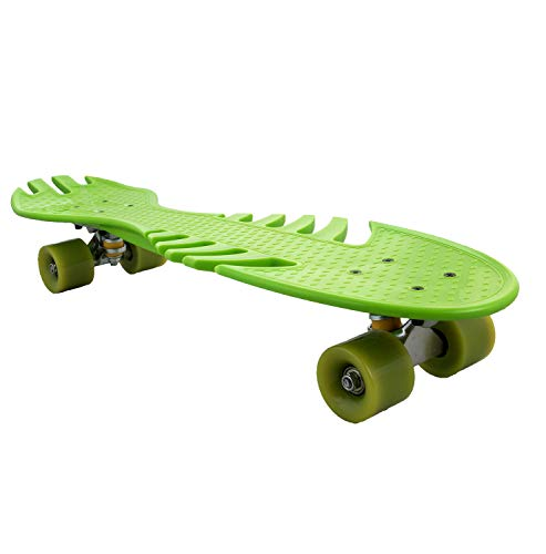 Airel Monopatin Skateboard   Skateboard 4 Ruedas   Monopatin   Skateboard con Rodamientos   Tabla Skate   Skateboard Completo