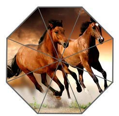Mdsgfc Paraguas de caballo personalizado diseño creativo paraguas de lluvia plegable 10