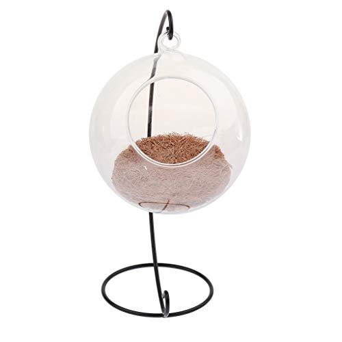 D dolity Pajarera transparente cristal casitas para pájaros con soporte