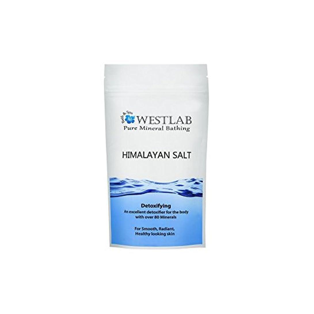 トリクル繊細大騒ぎWestlab Himalayan Salt 1kg (Pack of 6) - ヒマラヤ塩の1キロ x6 [並行輸入品]
