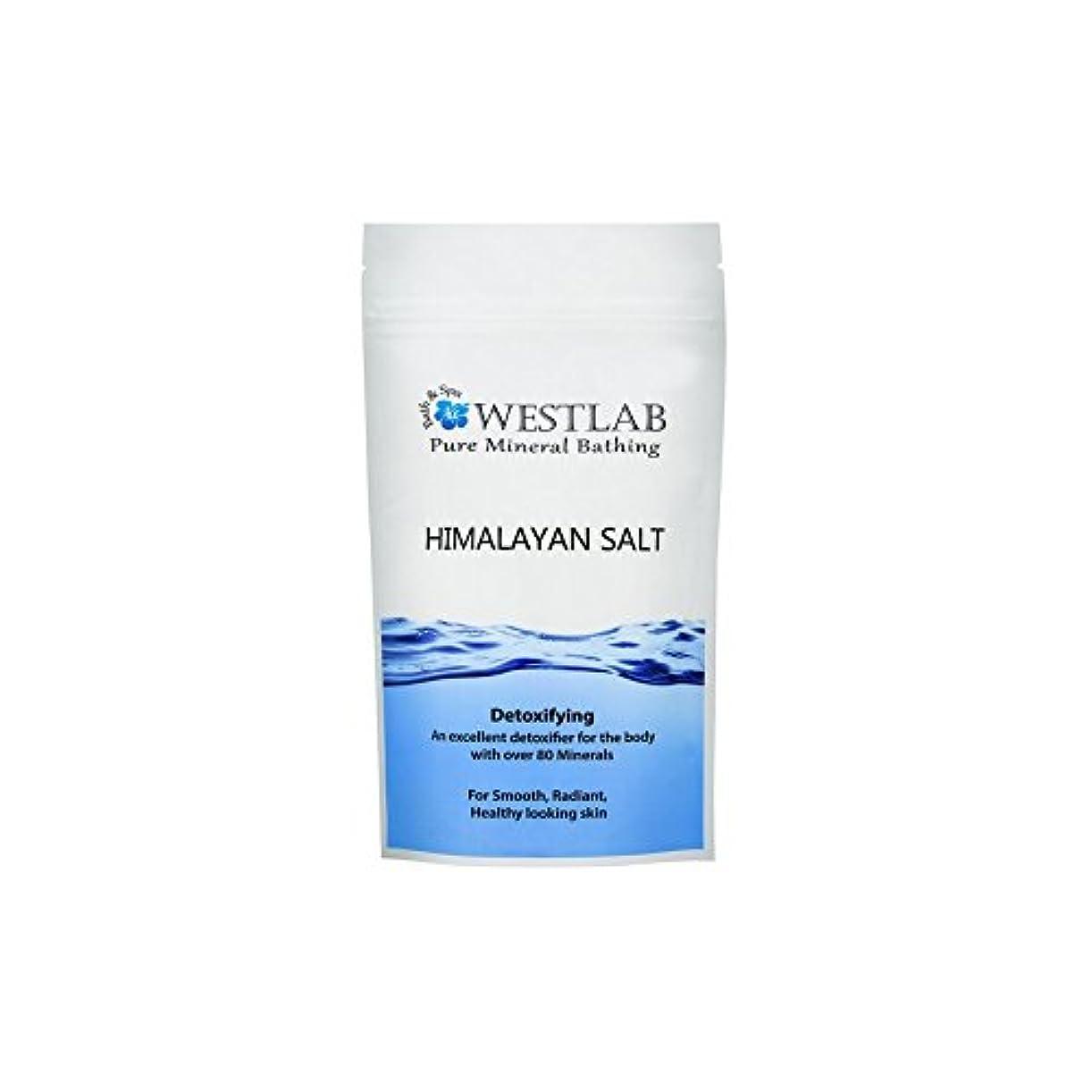 家庭コピーできればヒマラヤ塩の1キロ x2 - Westlab Himalayan Salt 1kg (Pack of 2) [並行輸入品]